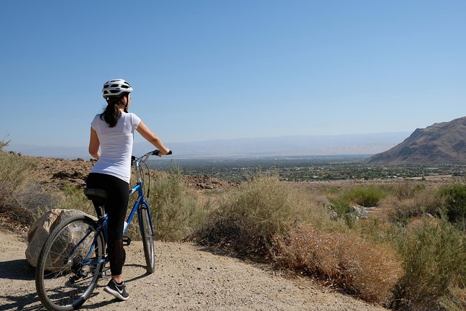 Indian Canyons Bike and Hike Small Group Tour from Palm Springs