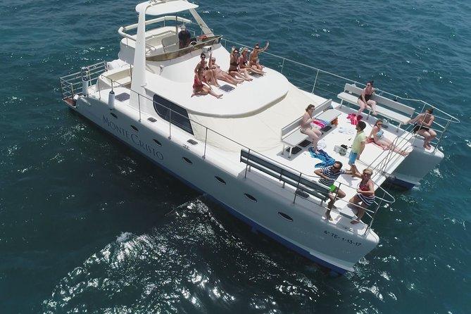 Baleias e golfinhos assistindo catamarã de luxo para 12 pessoas, refeição grátis e traslados