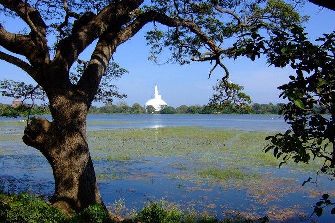 Anuradhapura Private Day Trip from Colombo, Negombo,orKatunayaka
