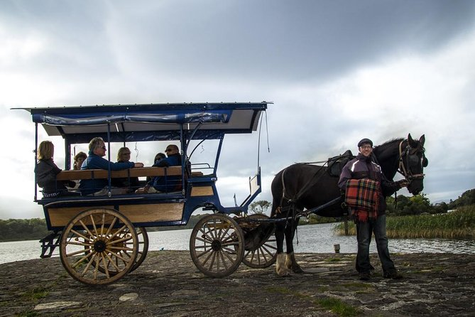 Jaunting Car Tour to Ross Castle from Killarney photo 3