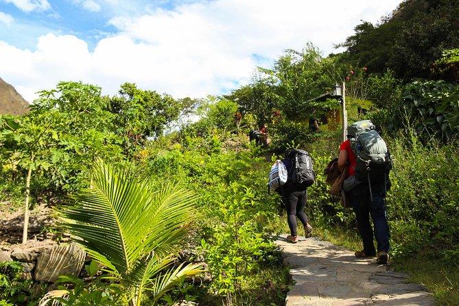 Excursión Premium de 4 días en la jungla inca hasta Machu Picchu desde Cuzco, Cusco, PERU