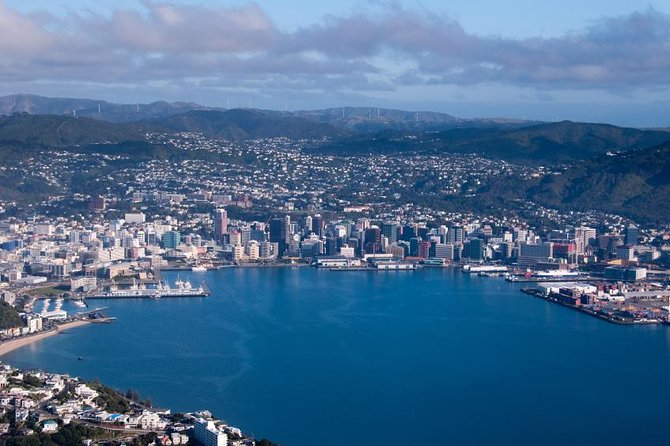 Wellington Shore Excursion: City Sightseeing Tour