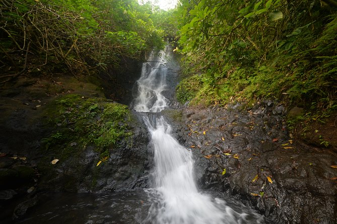 Ko'olau Waterfall Hike