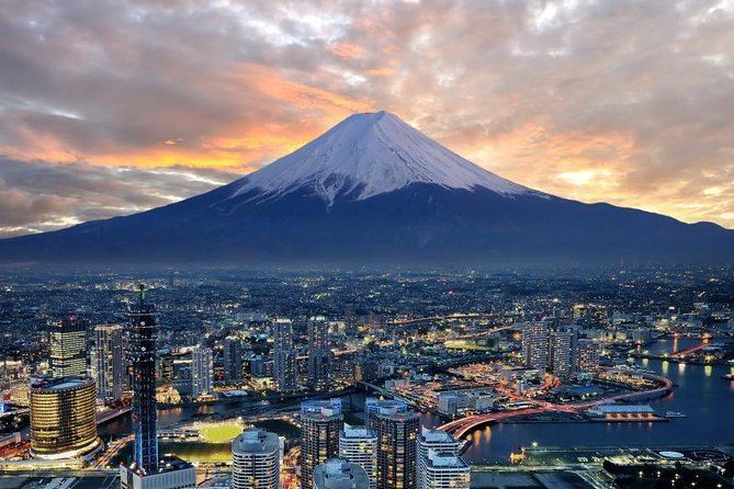 1 Day Charter Tour to Mt Fuji View