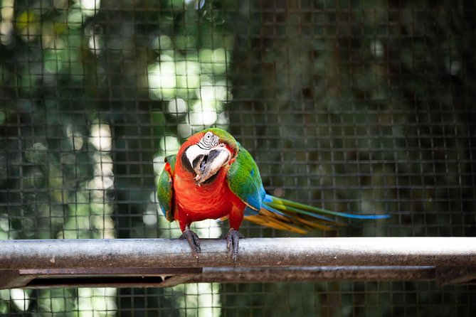 4 Days and 3 Nights 4 Stars Hotel Iguassu Falls - Private Tours
