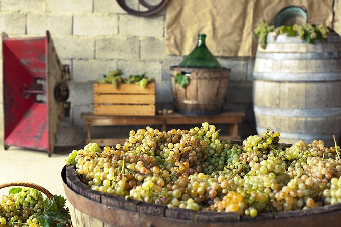 Grape stomping in Tuscan farmhouse from Florence