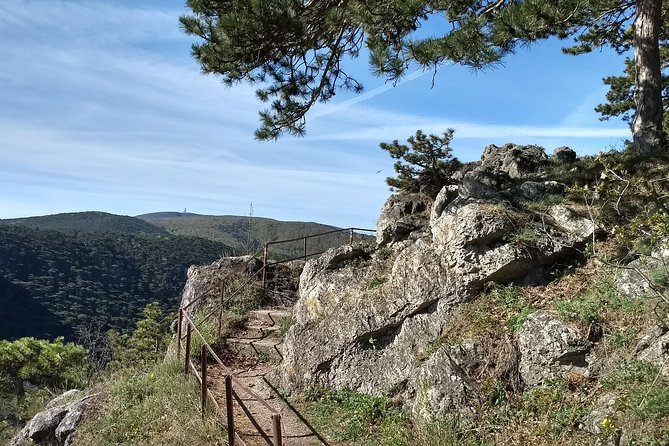 2-Hour Private Hiking Tour on Kalenderberg Mountain to Meet History from Vienna photo 2
