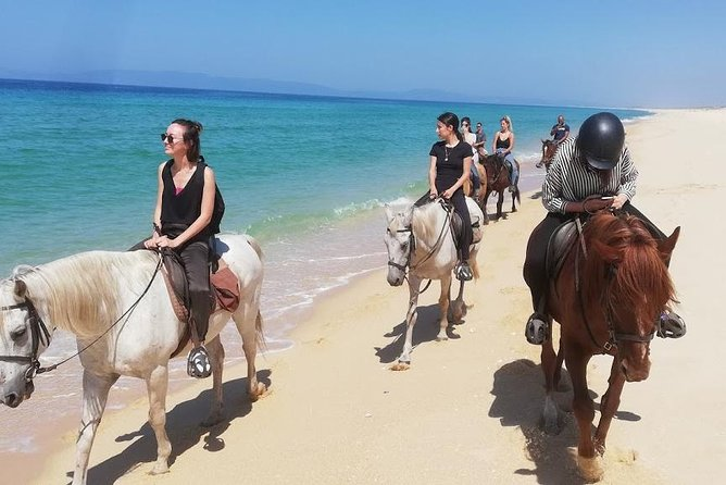 Horse Riding Tour on the Beach photo 2