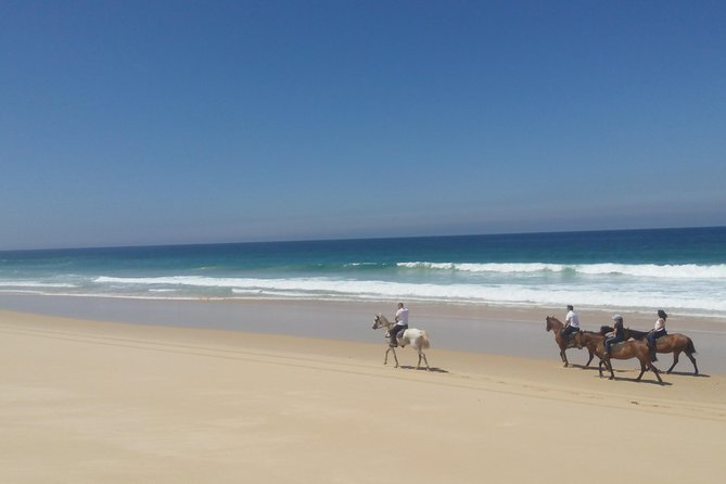 Horse Riding Tour on the Beach photo 10
