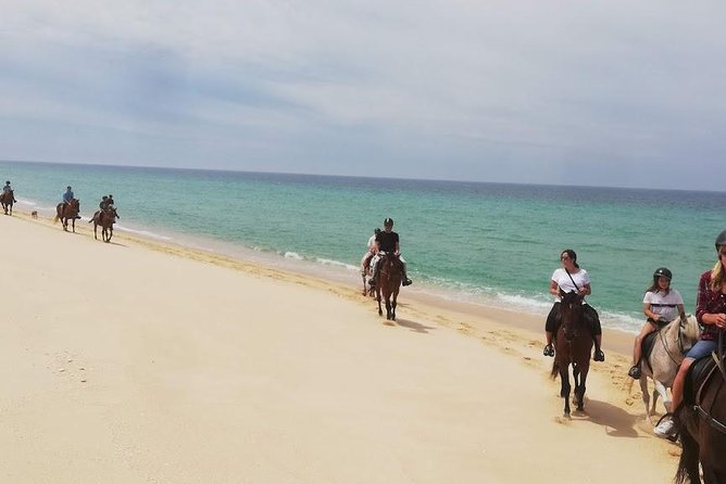 Horse Riding Tour on the Beach photo 7