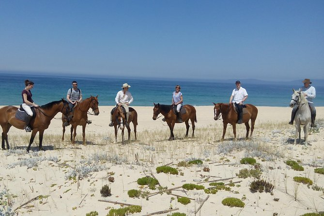 Horse Riding Tour on the Beach photo 3