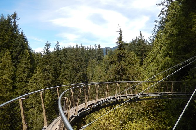 Vancouver Highlights and Capilano Suspension Park Tour - Private Charter (7 hrs) photo 3