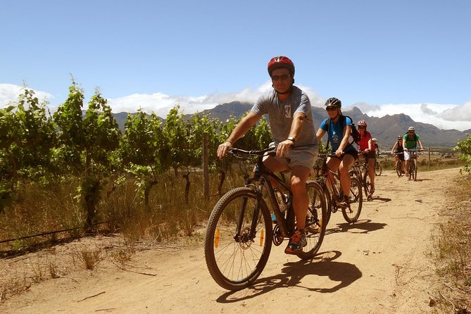 Stellenbosch Winelands Guided Luxury Cycle Tour photo 4