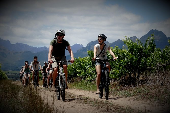 Stellenbosch Guided Winelands Cycle Tour photo 6