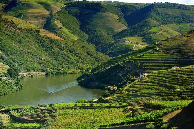 Douro Valley ( River Cruise Pinhão and wine Tasting in Cellar) Full Day photo 10