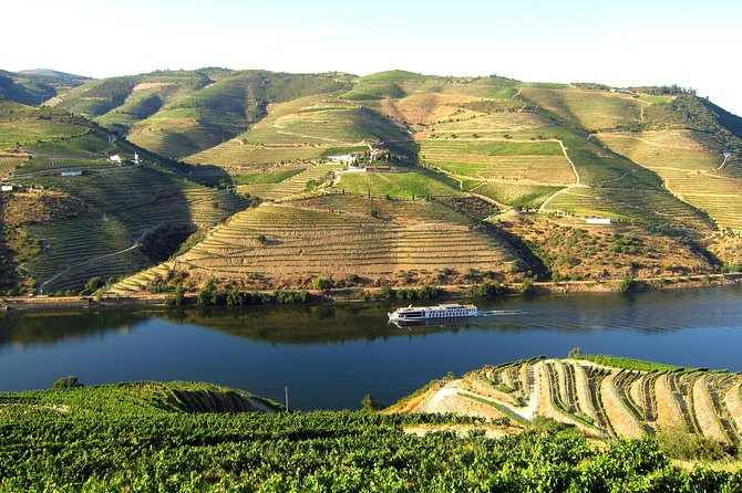 Douro Valley ( River Cruise Pinhão and wine Tasting in Cellar) Full Day photo 1
