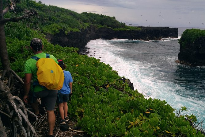 National Park Lava Cliffs and Black Sand Beach
