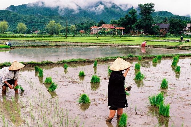 3-day Mai Chau Private Tour From Hanoi