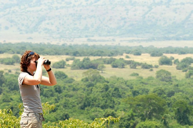 4 Days Luxury Wildlife Safari