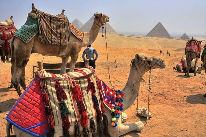 20 day Highlights of Turkey Greece and Egypt Tour