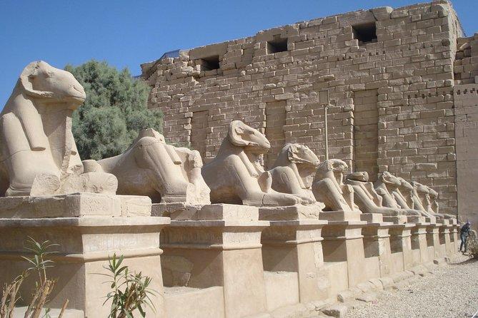 7-natt Luxor og Rødehavet Resort Private Tour fra Kairo
