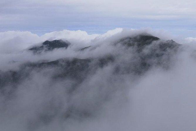 2-Day Mt Miyanoura and Jomon Sugi Hiking Tour on Yakushima Island