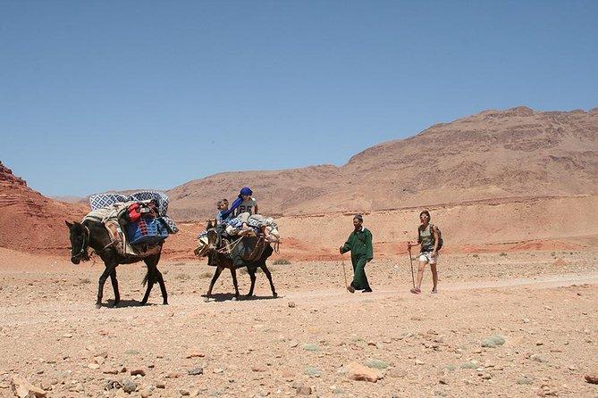 3 day nomadic hiking adventure Todra Gorge to Dades - Aventures Verticales Maroc