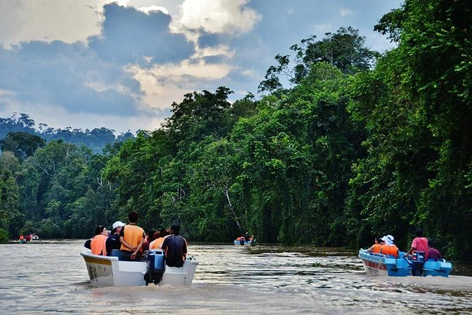2D1N Private Sandakan Sightseeing Tour with Kinabatangan River Cruise