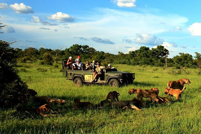 Enjoy an indelible treat with a visit to the Kruger National Park and Blyde River Canyon