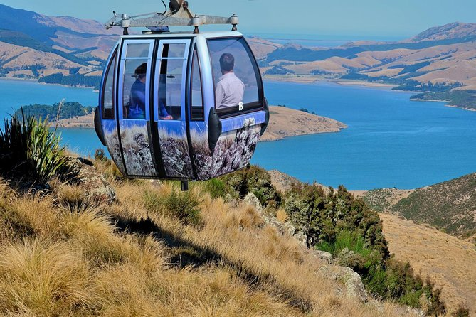 Christchurch Gondola Ride Ticket