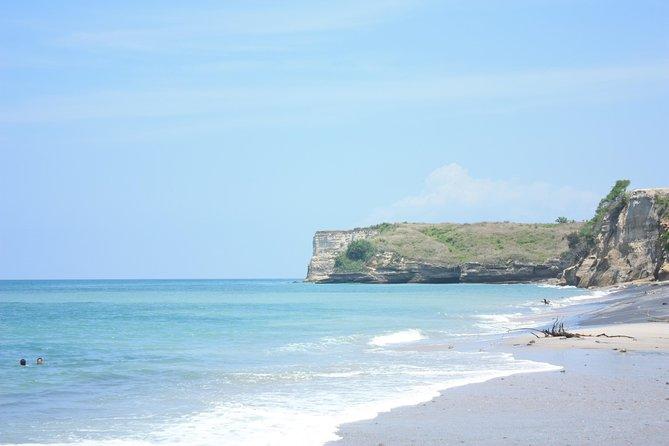 Dia de Playa en el Pacífico con Clases de Surf (Opcional)