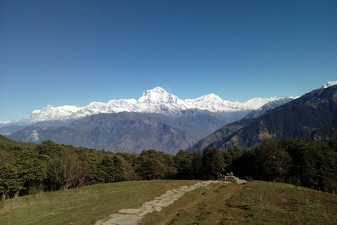 Annapurna Base Camp Very short Trek photo 1
