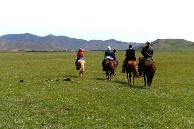 Amazing Nomadic Adventure