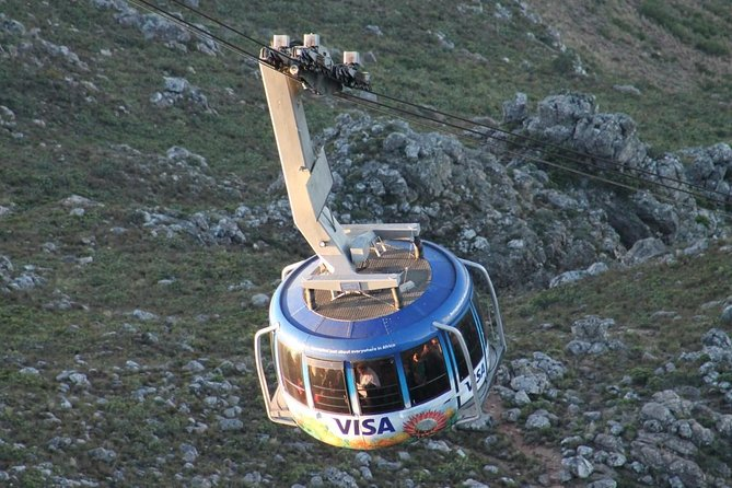 7 Days Johannesburg and Cape Town Tour with a safari