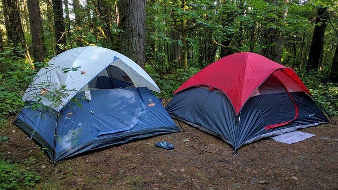 Kids Nature Camp