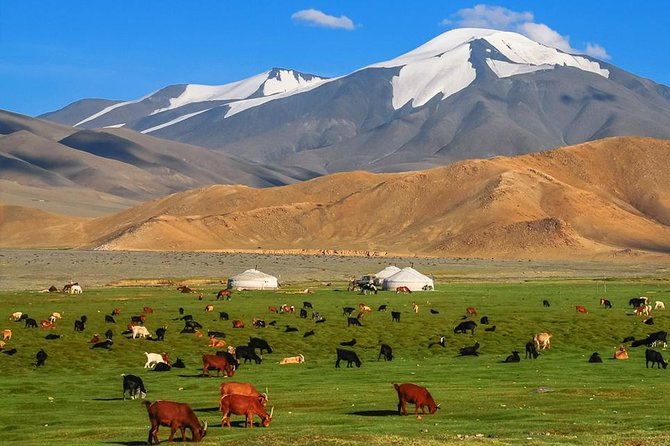 Best of Mongolian tour 7 days
