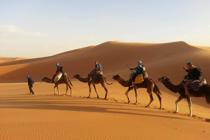 3-Day Private Desert Tour from Marrakech to Fez