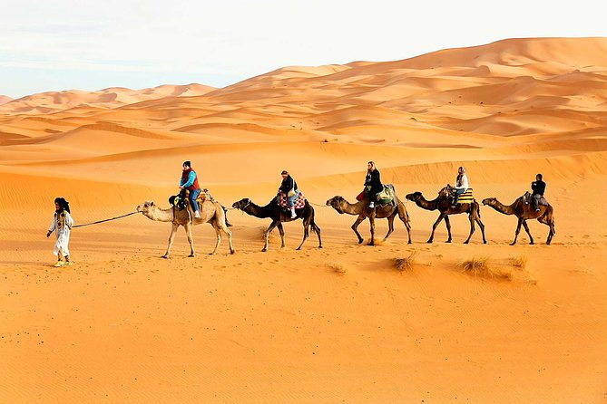 Camel Trekking Dubai with Dune Bashing and Sand Boarding