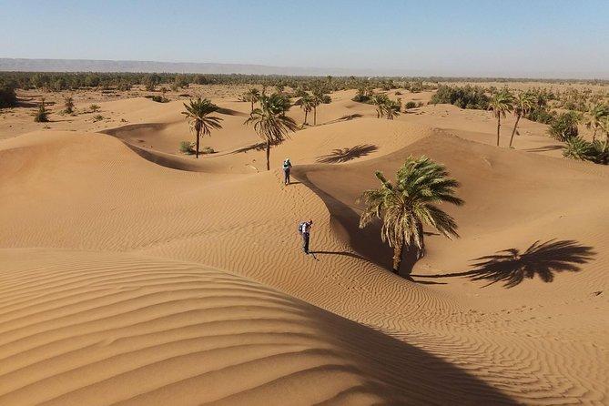 Camel Trek Morocco 8 Days