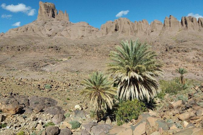 Trek Jebel Saghro Morocco 8 Days