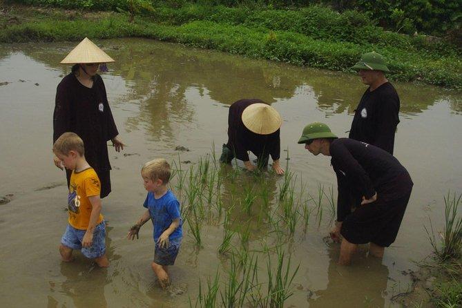 Viet Farm Homestay and Bai Tu Long Bay 3 days Trip