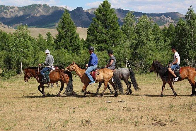Horse Trekking In Terelj National Park