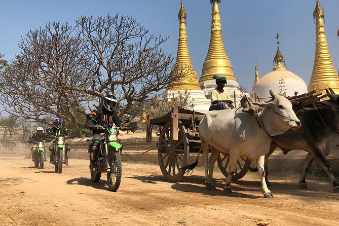 2 Day Mandalay Countryside Riding