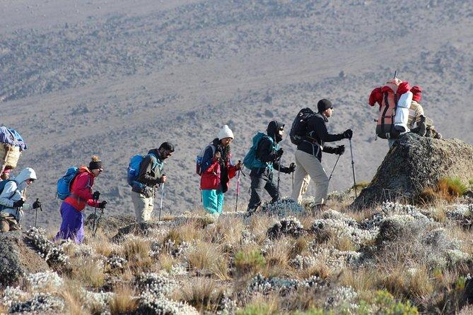 6-Day Marangu Route from Kilmanjaro with Guide