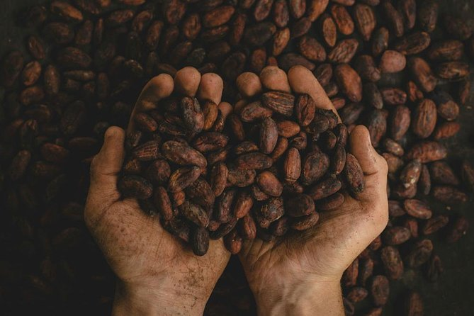 2-day Exclusive Coffee and Cacao Experience