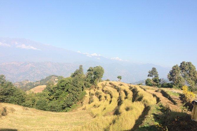 Kakani to Surya Chaur Hike (Kathmandu Day Hiking)