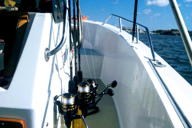 3/4 Day Private Fishing Trip Naples Bay, FL and the Gulf