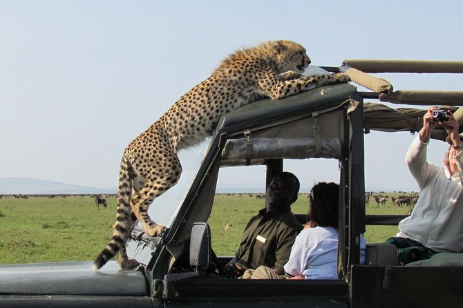 3 Day Serengeti and Ngorongoro Crater Tour photo 1