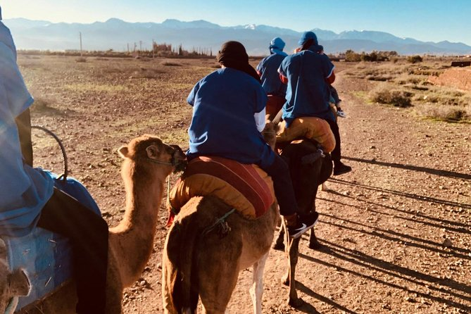 Atlas Mountains, Imlil, 4 valleys and Camel Ride from Marrakech