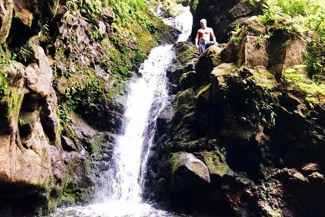 Jungle Waterfalls Hike